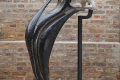 Phoenicopterus_Quentin-Garel
